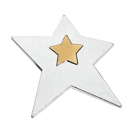 Staff Recognition Pins