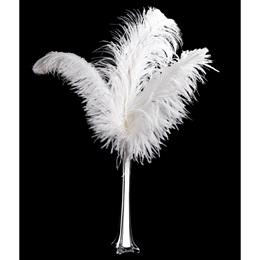 White Feather Centerpiece Kit