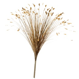 Holographic Onion Grass Spray - Gold