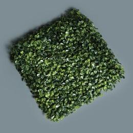 Boxwood Greenery Mat