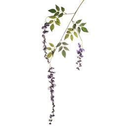 Wisteria Blossom - Purple