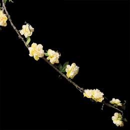 Peony Floral Vine - Peach