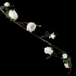 Rose Floral Vine - Cream