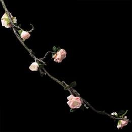 Rose Floral Vine - Light Pink