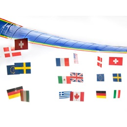 International Flag Canopy