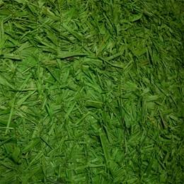 Green Raffia Grass Mat