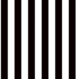 Black and White Striped Corrugated Paper