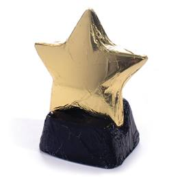 Giant Chocolate Star with Chocolate Base