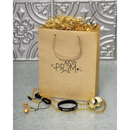 Metallic Magic Prom Swag Bag