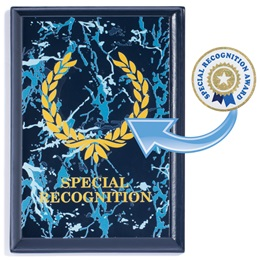 Blue Award Plaque With Sticker - Special Recognition