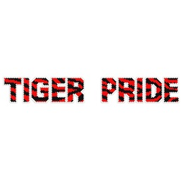 Put-in-Cups Fence Decorations, Tiger Pride