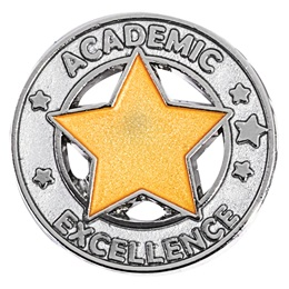 Academic Excellence Award Pin - Silver/Gold Star