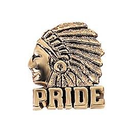 Indian Pride Award Pin - Gold Tone
