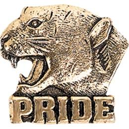 Cougar Pride Award Pin - Gold Tone