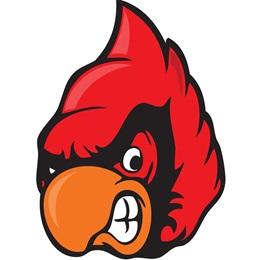 Cardinal Head Temporary Tattoos