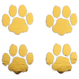 Metallic Gold Paw Temporary Tattoo