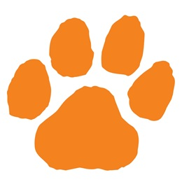 Orange Paw Print Accents