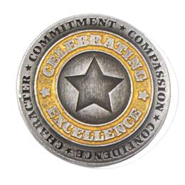 Celebrating Excellence Star Award Pin