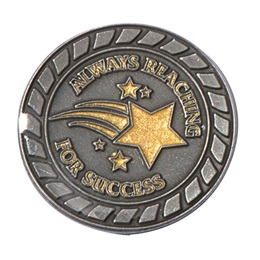 Always Reaching for Success Award Pin