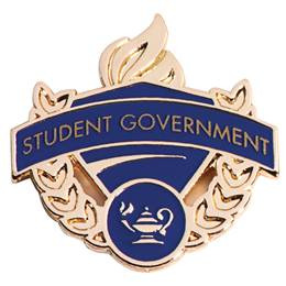 Blue/Gold Award Pin - Student Government