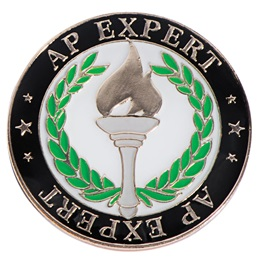 AP Expert Award Pin with Torch and Laurels