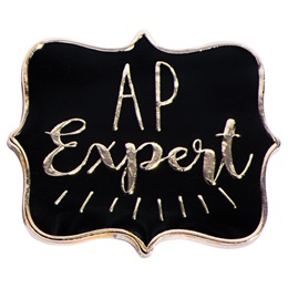 AP Expert Award Pin - Gold and Black