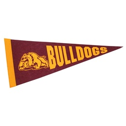 8 x 18 in. Pennant
