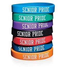 Senior Pride Silicone Wristband