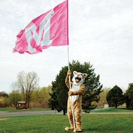 Pink Custom 10' Cheer Flag