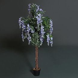 Purple Wisteria Tree Kit