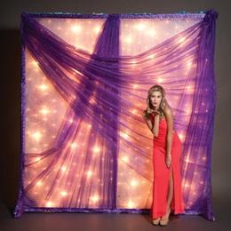 Purple Glitter Mesh Light Wall