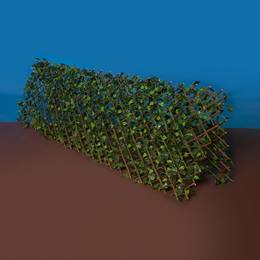 Countryside Ivy Fence Kit