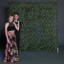Ivy Trellis Photo Wall