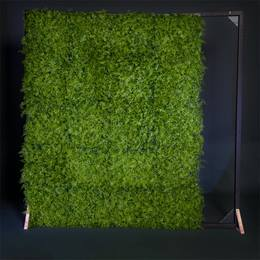 Greenery Photo Wall Kit