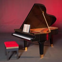 Grand Piano Kit