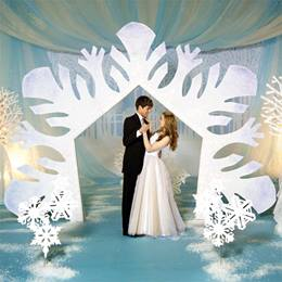 Snow Dance Arch Kit
