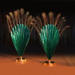 Peacock Plume Fans Kit (set of 2)