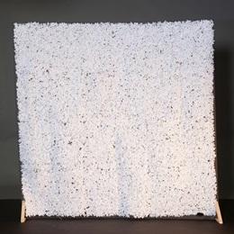 Milky White Flower Wall Kit