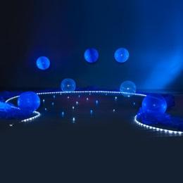 Accent Lights, Foam Swirls, Balloons and Organza Kit