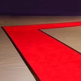 Rock the Red Carpet Kit