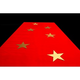 Celeb Style Gold Stars and Red Carpet Kit