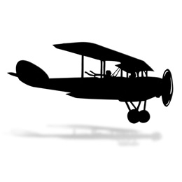 Bi-Plane Cut Out Silhouette