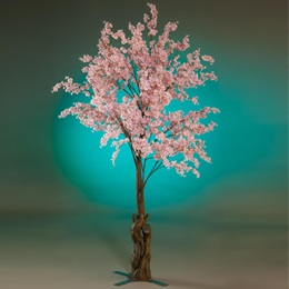 Cherry Blossom Tree Kit