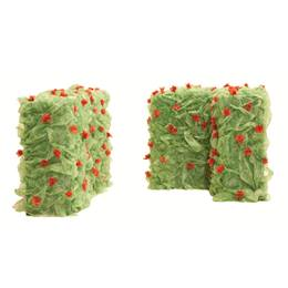 Only a Dream Hedges Kit (set of 2)