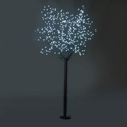 White Blossom Tree