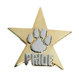 Paw Pride Award Pin – Embossed Silver on Gold Star