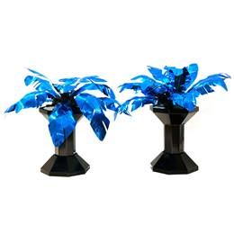 Forever in Paradise Palm Plants Kit (set of 2)